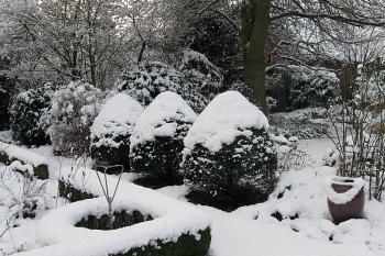 Garten in Siedenburg