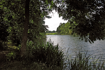 Gartenidylle am Eisseler See