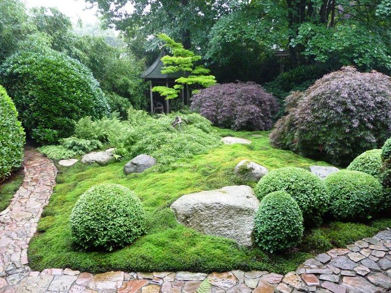 Japanische Gärten japanischer garten offene gärten region weser ems