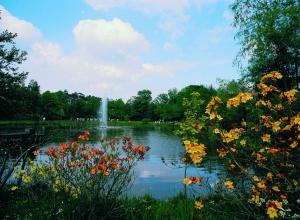Rhododendronpark Hobbie