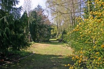 Waldrandgarten
